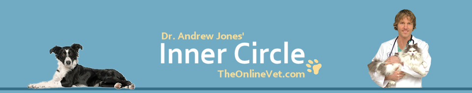 Dr. Andrew Jones The Online Vet: Dog and Cat Health
