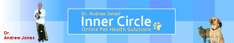 Heal Your Pets at home - Dr. Andrew Jones, The Online Vet
